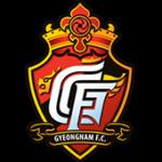 Gyeongnam FC Club logo